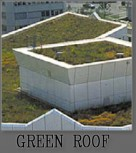 Bozeman Prospect Building - Eco-Friendly Green Roof